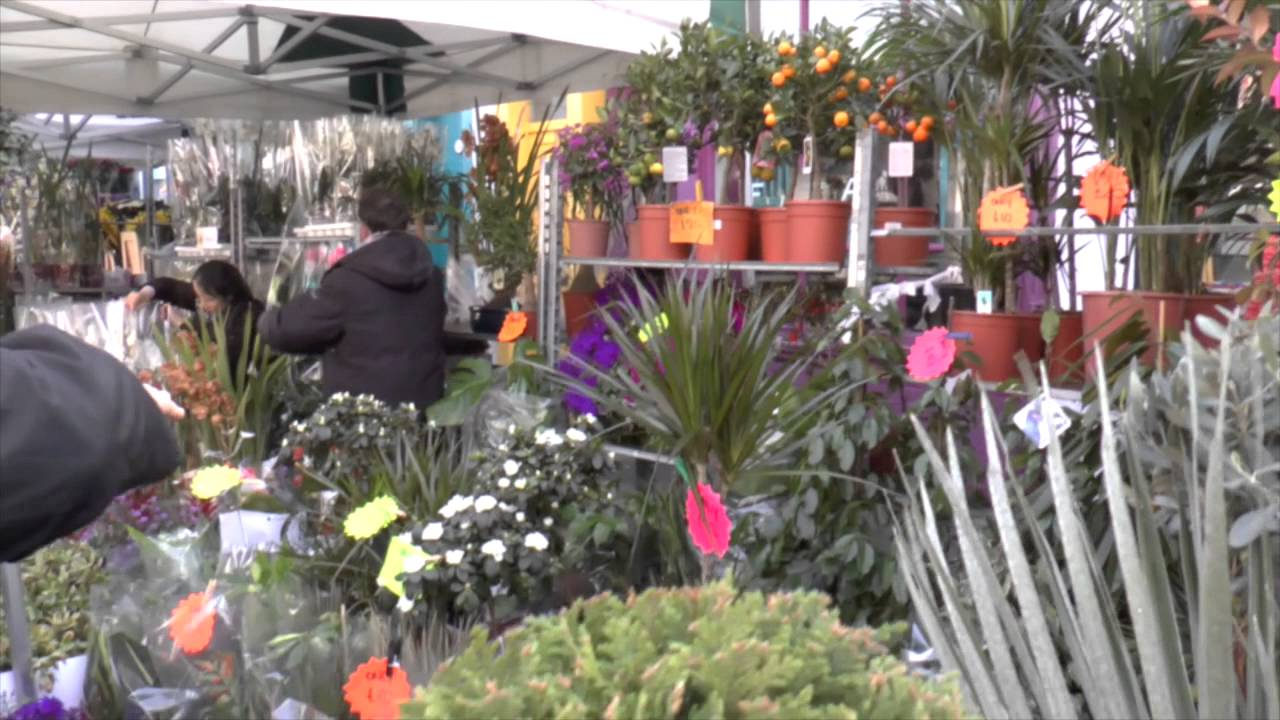 Columbia Road Flower Market – March 2014
