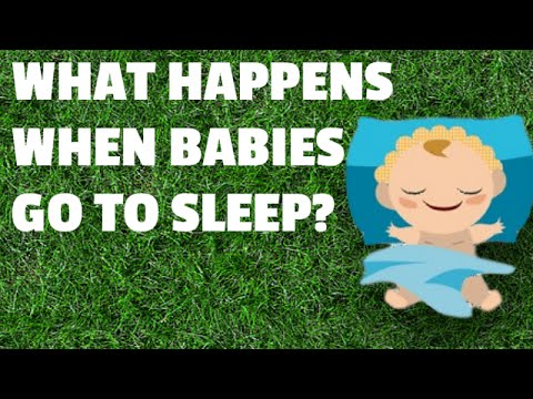 What Happens When Baby Goes to Sleep?