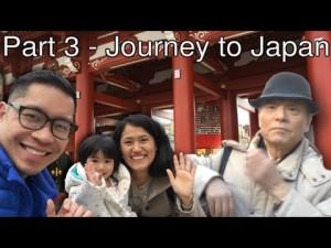 Journey to Japan –  Meiji Jingu, Shinjyuku Gyoen, Asakusa, River Sumida Cruise, Hamarikyu Garden