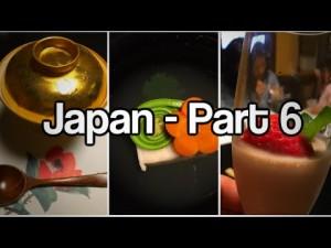 Journey to Japan – Part 6 – Imperial Palace, Hakone, Shinkansen (bullet train), Yamanochaya (ryokan)